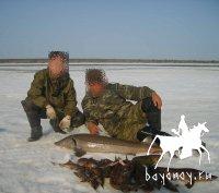 Рыбы Якутии (малая часть)
